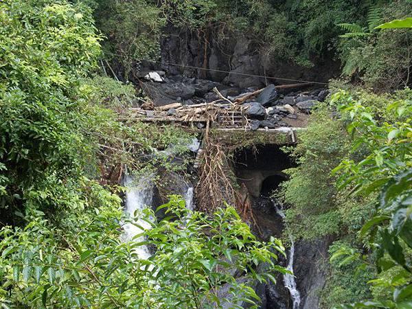 風災後烏來紅河谷2015 106