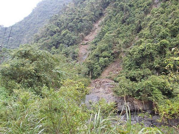風災後烏來紅河谷2015 107