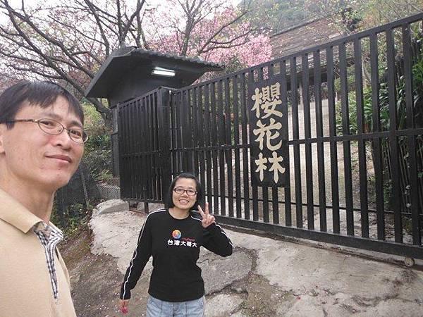 中正紀念堂賞櫻.陽明山賞櫻.旗尾崙山 059.JPG