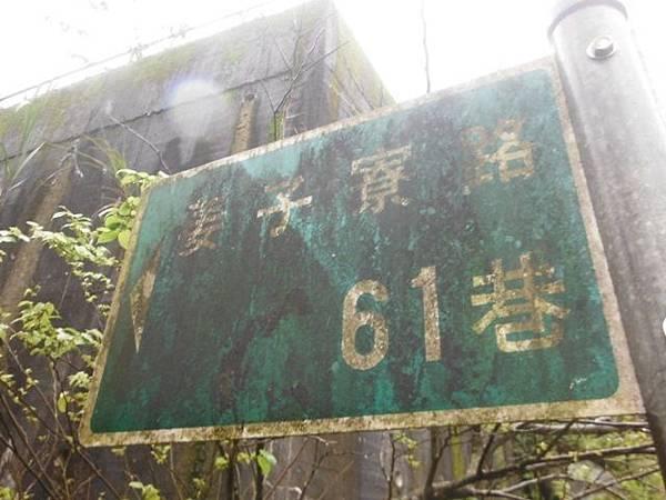 中正紀念堂賞櫻.陽明山賞櫻.旗尾崙山 073.JPG
