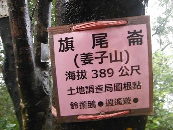 中正紀念堂賞櫻.陽明山賞櫻.旗尾崙山 099.JPG