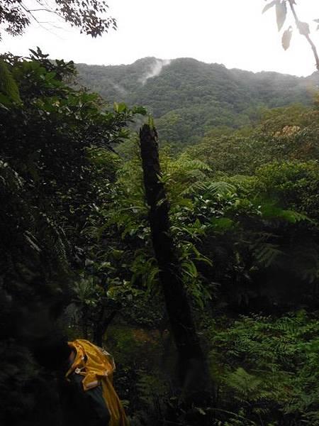 銀河洞瀑布.六分山.四面頭山 107.JPG