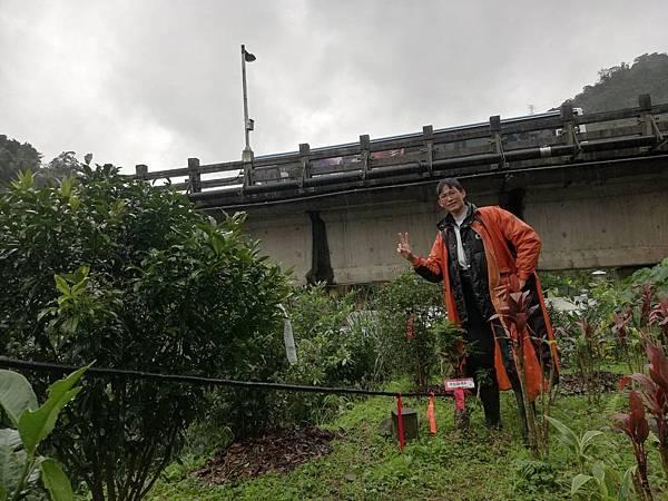 2019.12.06中心橋頭崙 (12).jpg