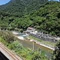 2019.09.11烏來黑橋 (51).jpg