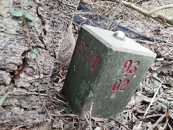 2019.12.19.牛埔尾山 (71).jpg
