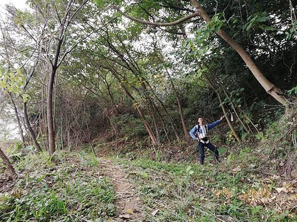 2019.12.19.牛埔尾山 (121).jpg