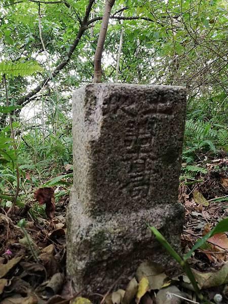 2019.12.19.牛埔尾山 (106).jpg
