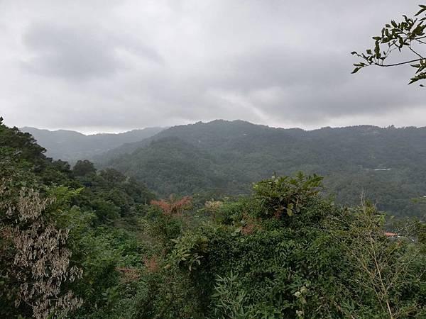 2019.12.19.牛埔尾山 (125).jpg