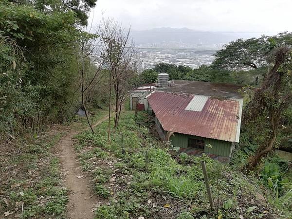2019.12.19.牛埔尾山 (107).jpg