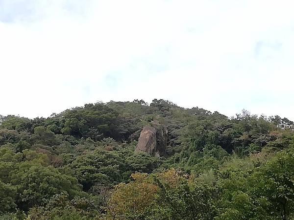 2019.12.19.牛埔尾山 (117).jpg