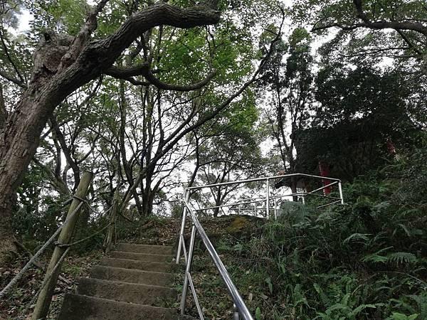 鶯歌碧龍宮3D地景.龜公山.牛灶坑山 (36).jpg