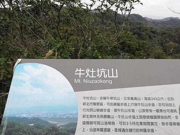 鶯歌碧龍宮3D地景.龜公山.牛灶坑山 (29).jpg
