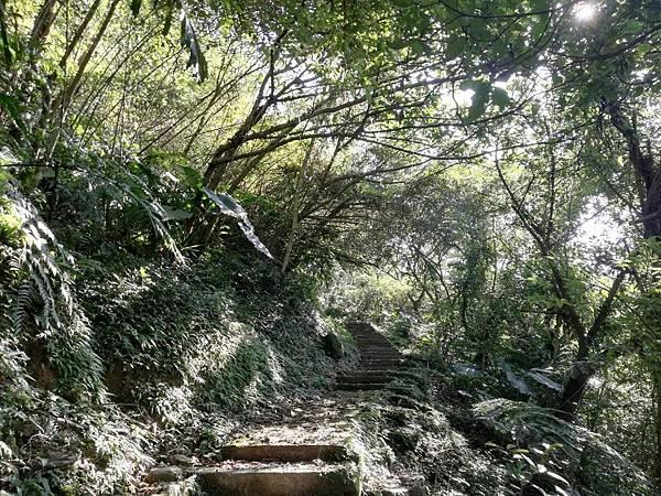 圳沽古道.磨石坑山 (50).jpg
