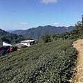 圳沽古道.磨石坑山 (52).jpg