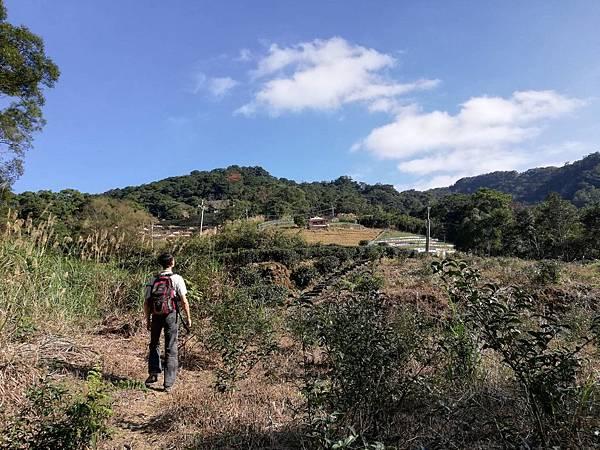 圳沽古道.磨石坑山 (43).jpg