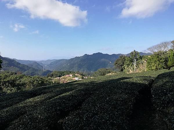 圳沽古道.磨石坑山 (70).jpg