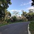 圳沽古道.磨石坑山 (5).jpg
