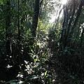 圳沽古道.磨石坑山 (21).jpg