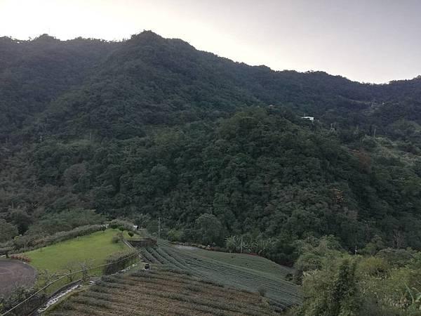 圳沽古道.磨石坑山 (27).jpg