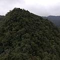 2019.12.14大桶山.烏來山 (46).jpg
