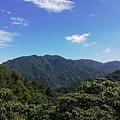 2019.05.31大桶山 (39).jpg