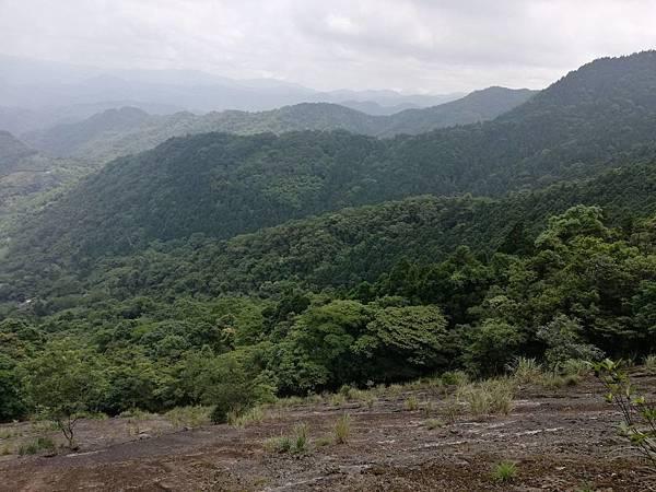 2019.05.31大桶山 (20).jpg