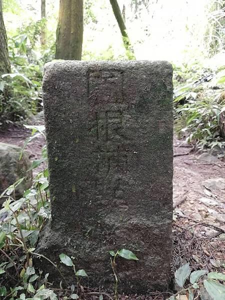 2019.05.31大桶山 (41).jpg