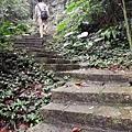 2020.01.19紫竹林步道 (37).jpg