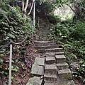 2020.01.19紫竹林步道 (30).jpg