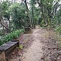 2020.01.19紫竹林步道 (3).jpg