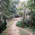 2020.01.19紫竹林步道 (17).jpg