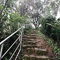 2020.01.19紫竹林步道 (2).jpg
