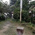 2020.01.19紫竹林步道 (22).jpg