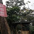 2020.01.19紫竹林步道 (25).jpg