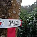 2020.01.19紫竹林步道 (13).jpg
