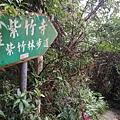2020.01.19紫竹林步道 (5).jpg