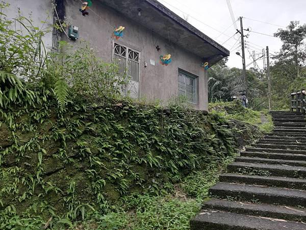 石蠋尖.九龍山 (56).jpg