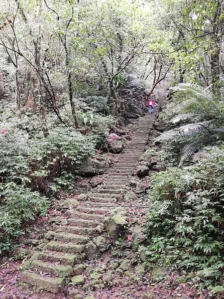 石蠋尖.九龍山 (92).jpg