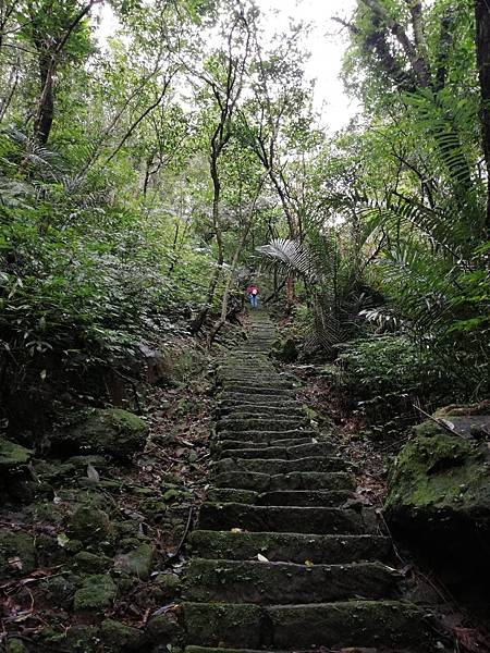 石蠋尖.九龍山 (66).jpg