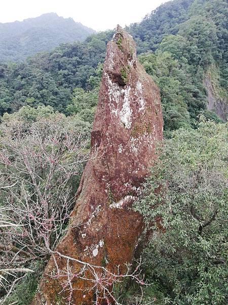 石蠋尖.九龍山 (80).jpg
