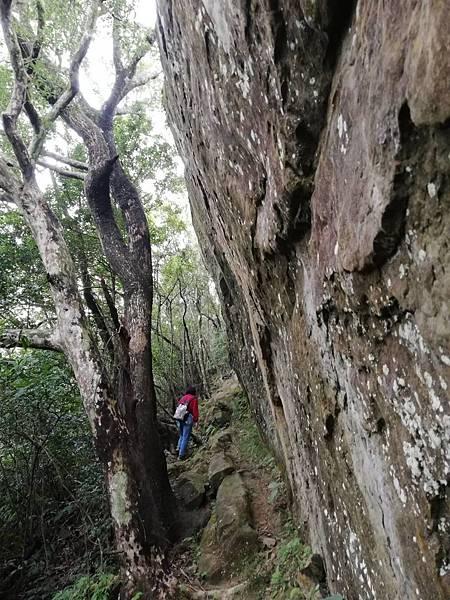 石蠋尖.九龍山 (30).jpg