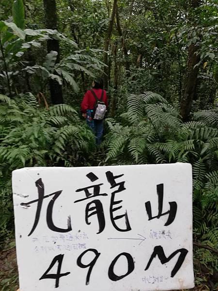 石蠋尖.九龍山 (22).jpg