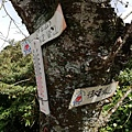 2020.01.22北投社三層崎公園.中正山 (48).jpg