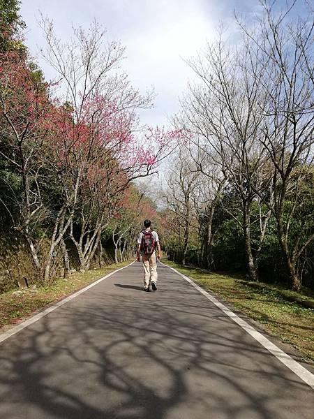 2020.01.22北投社三層崎公園.中正山 (37).jpg