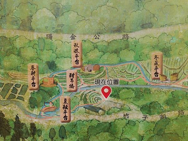 竹子湖青楓步道 (7).jpg