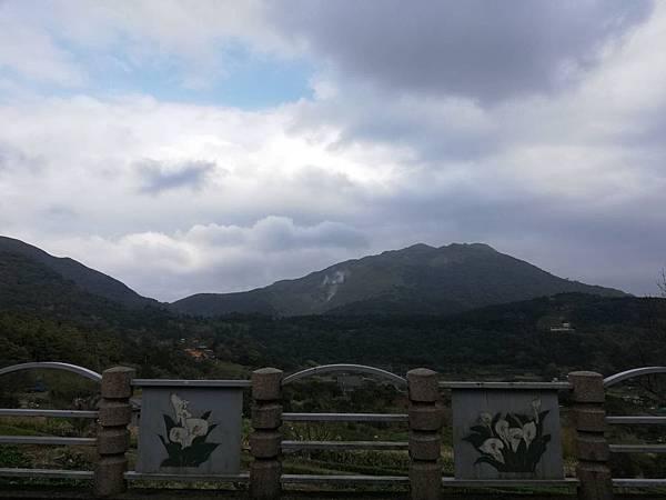 竹子湖青楓步道 (19).jpg
