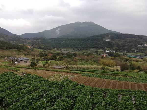 竹子湖青楓步道 (13).jpg