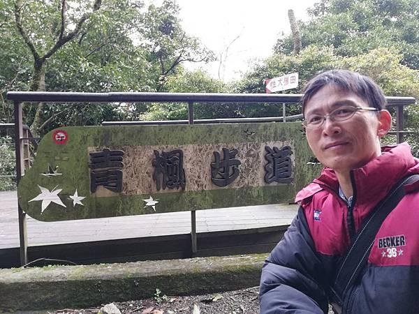 竹子湖青楓步道 (22).jpg
