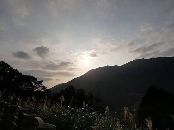 竹子湖青楓步道 (14).jpg