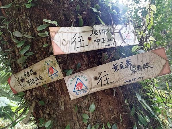 陳天喜墓 (57).jpg